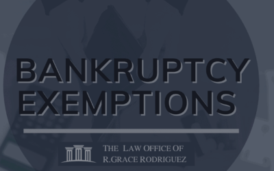 Bankruptcy Exemptions: an Overview
